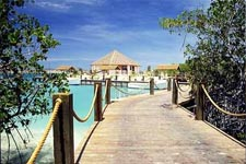 Image of dock in Aruba